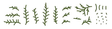 Set of thuja branches and their parts. Christmas object set for holiday decoration. Medicinal plants. Herbarium. Nature Vector illustration