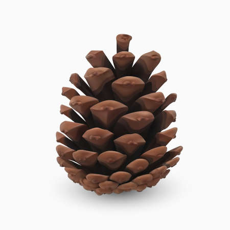 Pine cone. Realistic 3d object isolated on white. Christmas greeting card design template element. Pinecone vector icon, symbol, decor. Traditional seasonal decoration. Vector graphics illustration