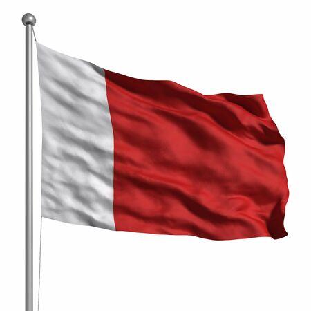 Flag of Dubai. Stock Photo - 9808931