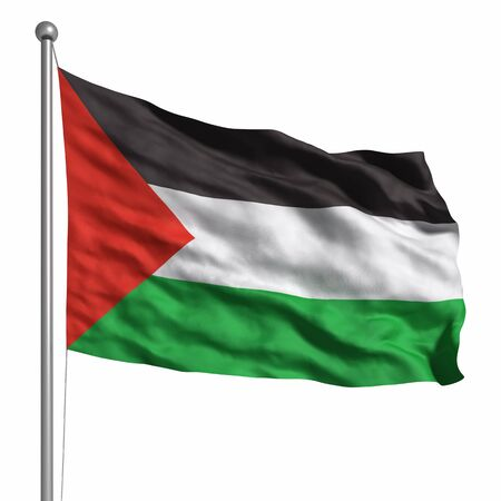 palestine: Flag of Palestine. Rendered with fabric texture (visible at 100%). Clipping path included. Stock Photo
