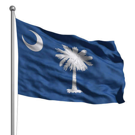 waving flag: Flag of South Carolina. Rendered with fabric texture (visible at 100%). Clipping path included.