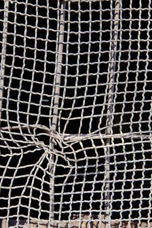 wire mesh: Wire Mesh Window Stock Photo