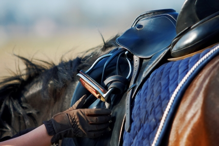 horse riding: Saddle with stirrups on a back of a horse