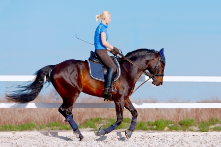The horsewoman on a brown horse in an arena against the blue sky