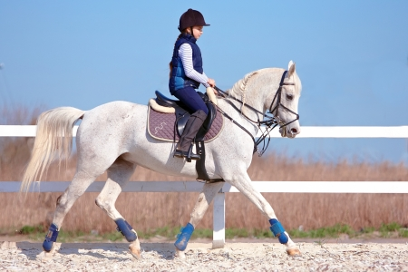 The horsewoman on a white Arab horse Stock Photo