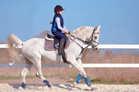 horseback riding: The horsewoman on a white Arab horse Stock Photo