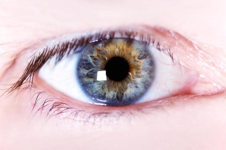 Iris of the eye of a human eye Stock Photo
