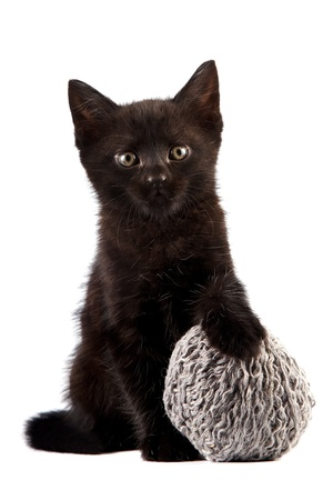Black kitten with a woolen ball on a white background