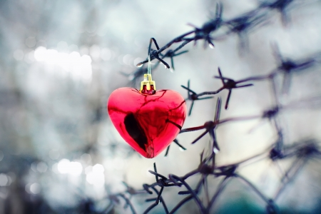 Heart and barbed wire  Love symbol  photo
