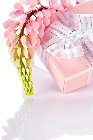 pretty s shiny: Lupine and gift box  Festive surprise  Box with a bow  Elegant gift  Gift box and lupine flowers  Stock Photo