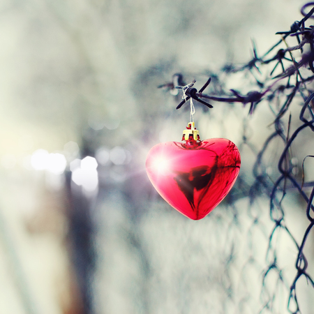 Heart and barbed wire. Love symbol. Symbol of love and metal Stock Photo