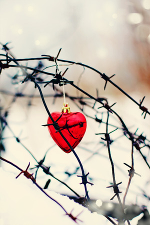ecurity: Heart and barbed wire. Love symbol. Symbol of love and metal Stock Photo