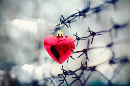 Heart and barbed wire. Love symbol. Stock Photo