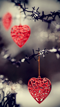 barbed wire frame: Red hearts and barbed wire. Love symbol.