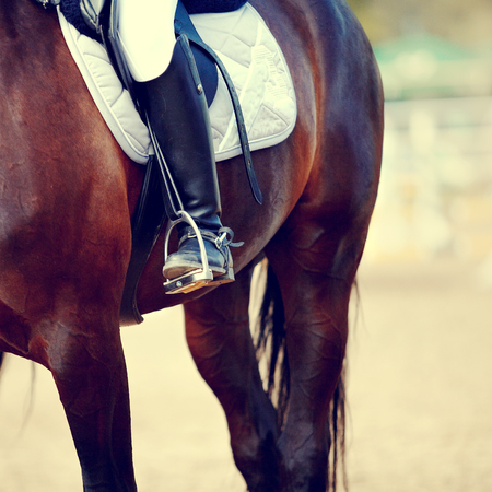 stirrup: Foot of the athlete in a stirrup astride a horse