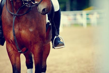caballo: Pie del atleta en el estribo a lomos de un caballo