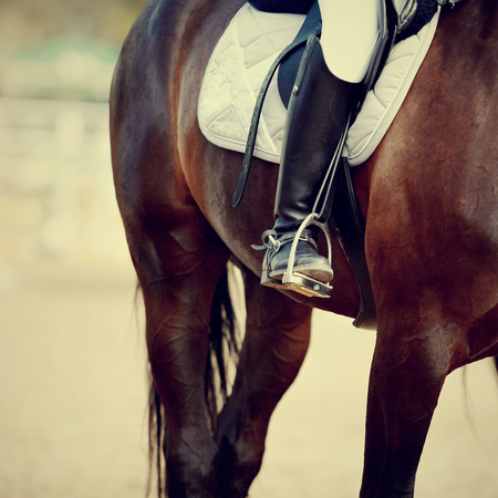 stirrup: Foot of the athlete in a stirrup astride a sports horse