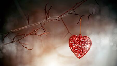 forbidden love: Red heart on prickly branches. Love symbol.
