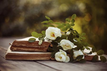 libros abiertos: escaramujo blanco y abrir libros antiguos sobre una mesa de madera