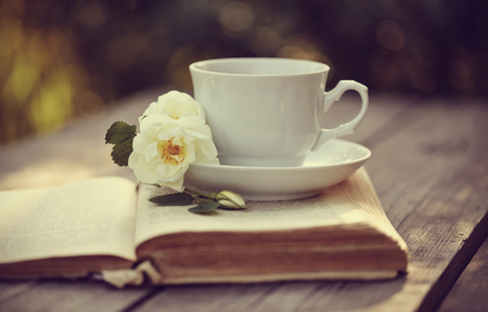 bible flower: White tea ñup with a flowers of dogrose on an open old book on a wooden table.