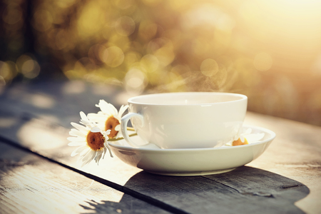 White porcelain cup and camomiles on a wooden table. Stock Photo