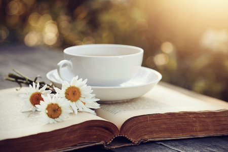 White porcelain cup, camomiles and the open old book on a wooden table Stock Photo