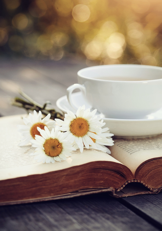 Old open book and a cup with a camomiles on a wooden table. Zdjęcie Seryjne