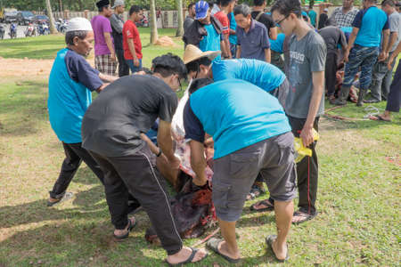 Muadzam Shah, Malaysia - SEPTEMBER 1st , 2017: Malaysian Muslim worked together skinning beef before distribute to the poor and community during Eid Al Adha ,the Feast of Sacrifice or Qurban