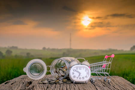 Mini supermarket shopping cart , white alarm clock and coins in the jar on old wood with blurred green nature background and beautiful sunrise. Stock Photo