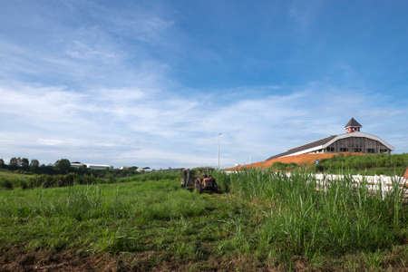 Muadzam Shah, Malaysia – Disember 6th  , 2017 :  Tractor mowing pasture for silage at The First Dairy Farm Sdn Bhd, Muadzam Shah, Pahang, Malaysia. Editorial