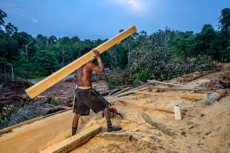 Muadzam Shah, Malaysia - 8 September 2018 : Unidentified timber workers raised the already cut timber near the forest 新聞圖片
