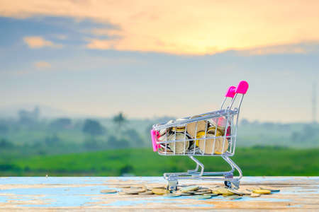 Mini supermarket shopping cart and coins on blurred green nature background with beautiful  sunrise Stockfoto