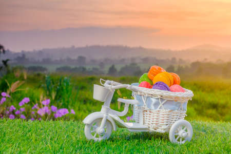 Macaron in miniature bicycle   during beautiful sunrise.