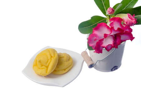Pink Adenium and cream puff on a white background Stock Photo