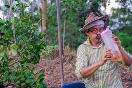 Senior farmer drinking water from plastic bottle in the field on the plantation orchard while working on his farm gardener