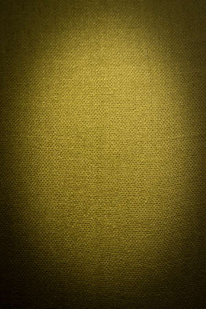 textile image: Abstract textile green background. Vertical image with dark vignette effect