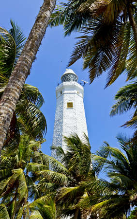 southern sri lanka: White lighthouse Dondra Head, the southern cape of Sri Lanka coastline, Ceylon. View between palm leaves Stock Photo