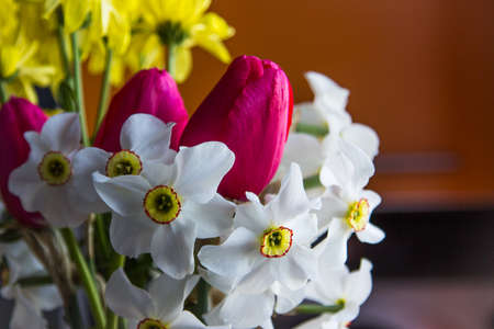 Bouquet of different flowers: narcissus, tulips, chrysanthemums. Colorful blurred background wth front light