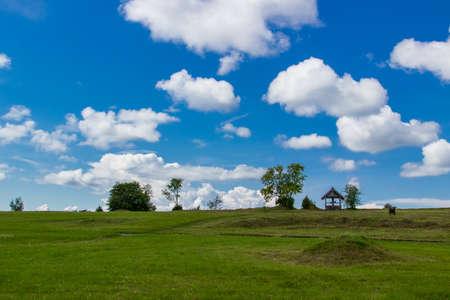 vibrant cottage: summer rural landscape