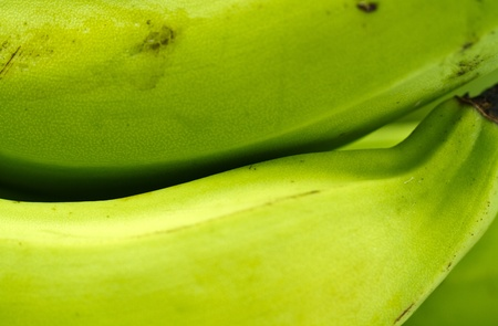a close up view on the green banana skin  photo