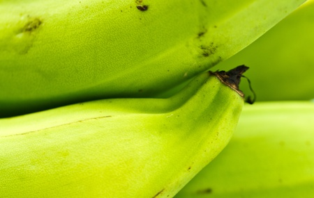 green banana abstract background photo