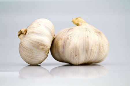 Two garlic bulbs isolated over a white bluish background in landscape orientation photo