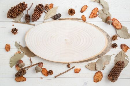 cross-section of a tree on a wooden background in autumn style . top view with space for text