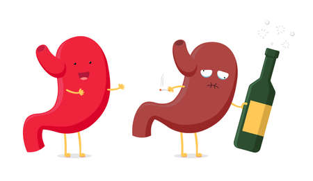 Healthy fun and sick unhealthy ill drunk stomach character hold in hand alcohol bottle and cigarette. Human digestive system cartoon organ indigestion concept. Vector anatomy illustration