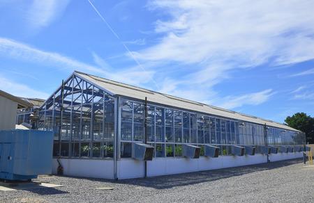 Gewachshaus Mit Dem Okosystem Aus Glas Und Metall Mit Pflanzen Im
