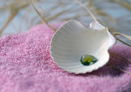 Spa salon towel shell aromatherapy treatment relaxation.
