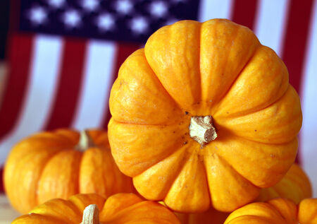 Pumpkin orange ripe for a fresh round of beautiful autumn holiday. photo