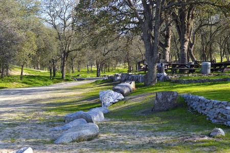 middle joint: Recinto di pietra in erba parco verde all'aperto