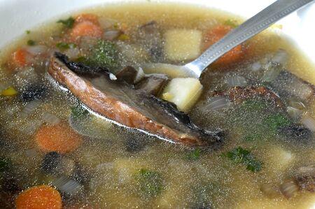 portobello: Portobello mushroom soup in a white enamel bowl