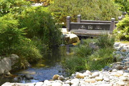 Japanse tuin met mooie frisse groene planten Stockfoto